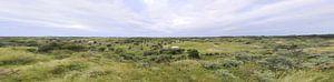 Duin Panorama van Erik Reijnders