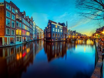 Amsterdam sur Roy Poots