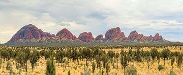 Panorama of Kata Tjuta, Olgas, Northern Territory of Australia van