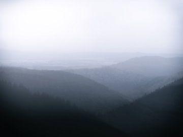 Liebesbankweg im Nebel van Dirk Bartschat