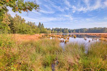 Die Landschaft von Drenthe von eric van der eijk