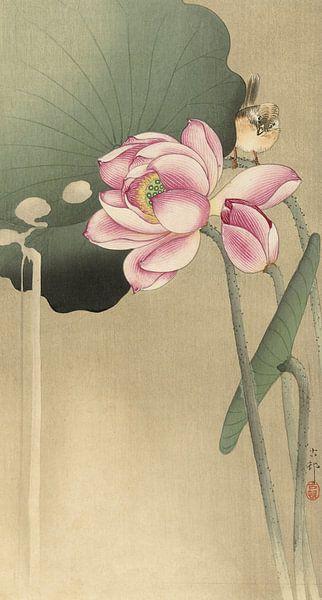 Lotus met vogel, Ohara Koson van 1000 Schilderijen