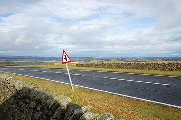 Weg in Schotland met verkeersbord von Susan Dekker