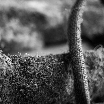Korb mit Brennholz von FRE.PIC