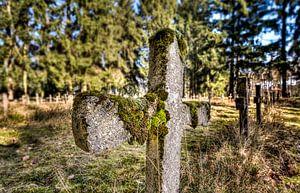 Friedhof der Geisteskranken von Remco Artz