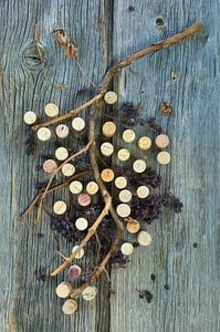 kurkenand gedroogde druiventakken op een houten oppervlak