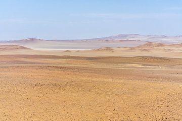Wüstenlandschaft von Joost Potma