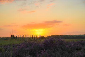 Zonopkomst bij de paarse heide en grafheuvels op de Regte Heide van Miranda Rijnen Fotografie