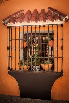fotoposter of  wanddecoratie Spanje Costa del Sol