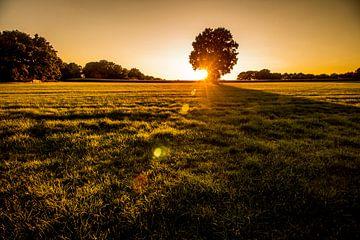 Zonsondergang op het platteland van