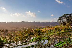 este schilderachtige Aziatische achtergronden en landschappen, volkscultuur en natuur van Bali en Ja