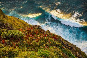 Zonsondergang aan de kust van Madeira van Leo Schindzielorz