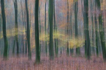 Herfst in beweging van Barbara Brolsma