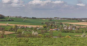 Bloesem in Epen Zuid-Limburg van John Kreukniet