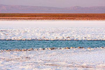 Salar de Atacama van Eriks Photoshop by Erik Heuver
