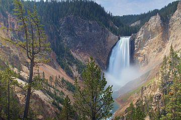 Yellowstone National Park, Wasserfall von Afke van den Hazel