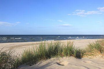 Dünen von Ostsee Bilder