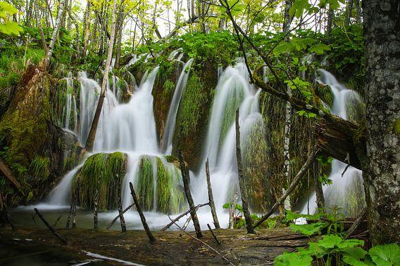 Natuurpark plitvice meren in Kroatië