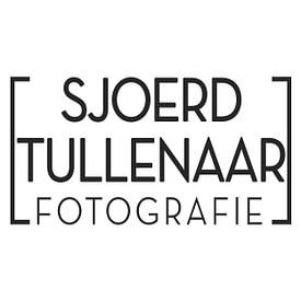 Sjoerd Tullenaar avatar