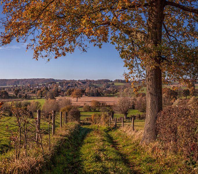 Herfstkleuren bij Epen in het   Zuid-Limburgse Heuvelland van John Kreukniet