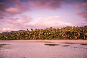 Palmenstrand bij Cape Tribulatio.