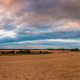 Panorama Loonse en Drunense Duinen van Sander Poppe