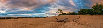 Panorama Loonse und Drunen Dünen von