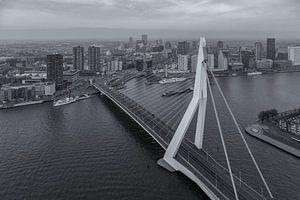 Erasmusbrug from 'The Rotterdam'