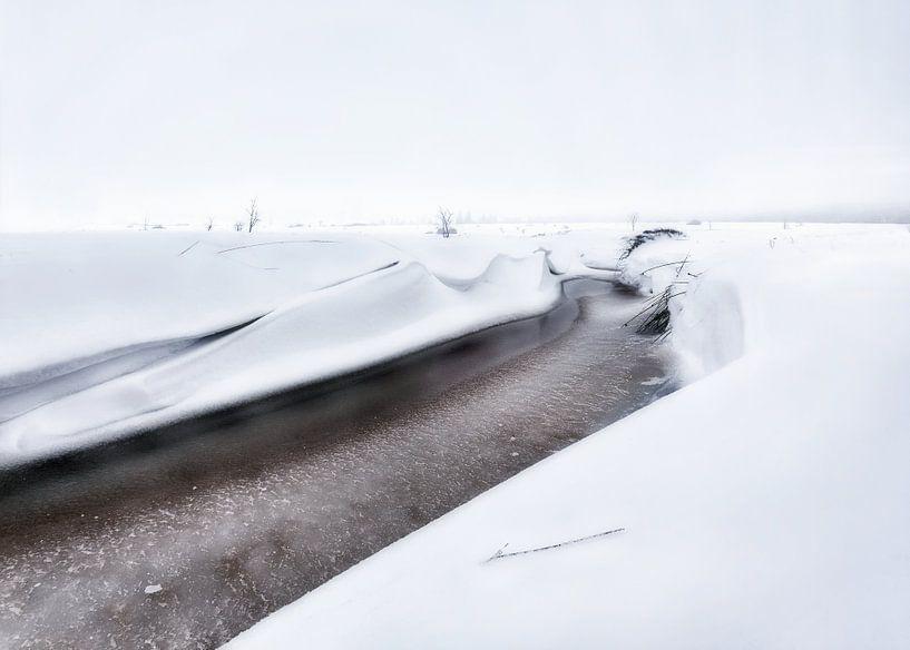 Winterlandschap Hoge Venen van Götwin van Bergen