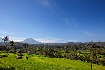 Berg Agung oder Gunung Agung. Eine Darstellung eines heiligen und berühmten balinesischen Vulkans. von Tjeerd Kruse
