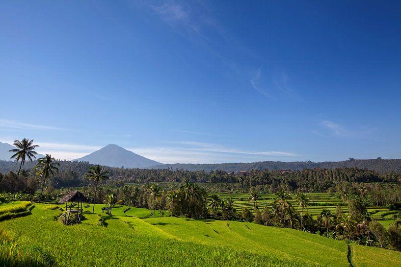 Mount Agung of Gunung Agung. Een weergave van een heilige en beroemde Balinese vulkaan van Tjeerd Kruse