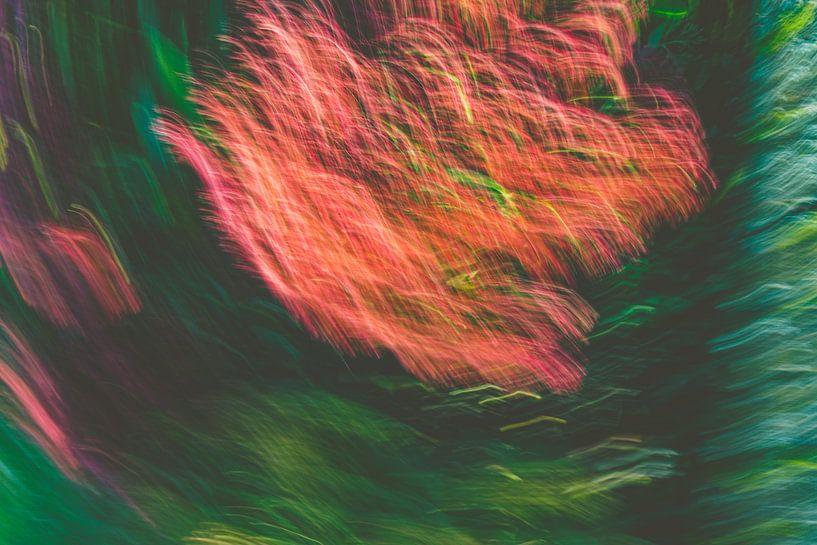 Feuerregen in t grün von Jan Peter Jansen