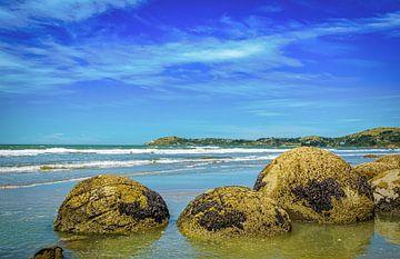 Moeraki Boulders op het strand, Nieuw Zeeland van Rietje Bulthuis