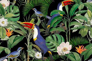 Das Paradies des Tukan von Andrea Haase