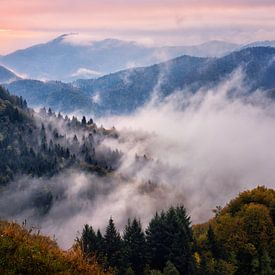 Sloveense Lagen van Pieter Struiksma