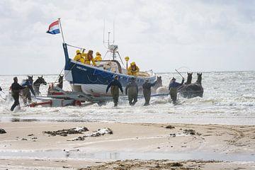 Paardenreddingsboot van Marjan Noteboom