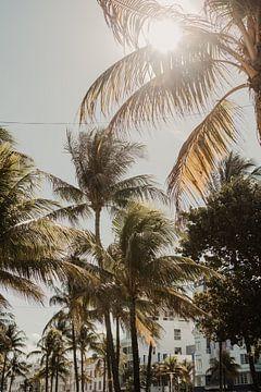 Miami Florida von Amber den Oudsten
