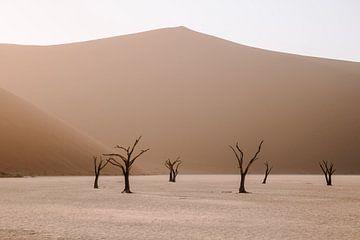 Die Toten im Sossusvlei Nationalpark, Namibia von Maartje Kikkert
