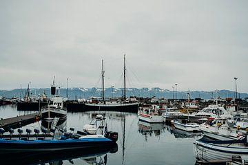 Isländischer Hafen von Pascal Verheul