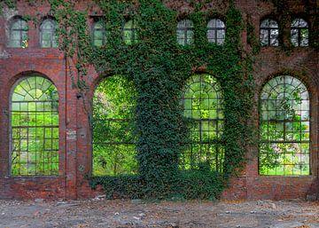 Nostalgische Fabrikfenster mit Efeu von