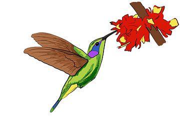 Kolibri von Teun Poppelaars