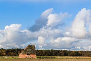 Schapenboet op Texel van