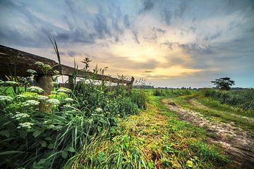 Landelijke Zonsondergang Nietap Drenthe van R Smallenbroek