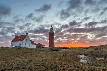 Leuchtturm Eierland bei De Cocksdorp, Texel von Stephan Neven