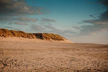 Dünengebiet von Ameland von Lindy Schenk-Smit