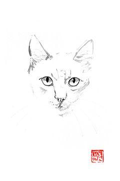 Ingwer-Katze von Péchane Sumie