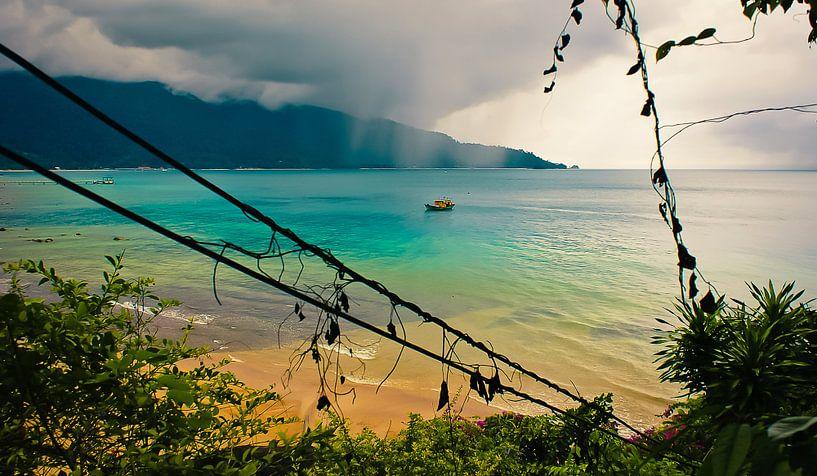La saison des pluies @ l'île de Tioman sur Sven Wildschut