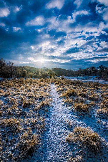 Winters Nederland van Martijn Kort