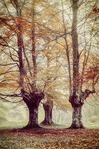 De bladeren vasthouden