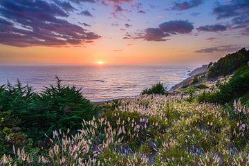 Big Sur von Denis Feiner